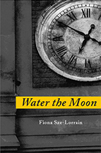 Image: Water the Moon